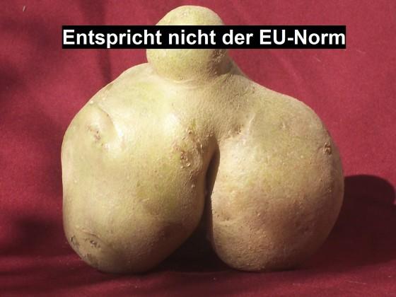 So was liegt auf dem Kartoffelfeld herum