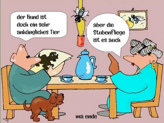 Humor 5